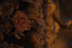 La Viga (beliberri) Tags: semana santa de jerez 2019 cofradia procesion turismo españa spain cultura lunes santo hermandad la viga nuestra señora del socorro