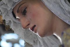 La cena (beliberri) Tags: semana santa de jerez 2019 cofradia procesion turismo españa spain cultura lunes santo hermandad la cena paz y concordia