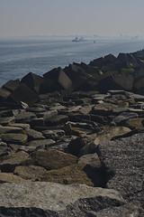 Sea fog (mark his view) Tags: sony a7r2 schneiderkreuznach xenon tug harbour rotterdam holland