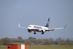 EI-EVG BFS 21/04/19 (ethana23) Tags: planes aviation ryanair boeing 737 737800
