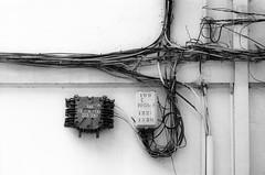 199 (dirojas) Tags: leica m3 90mm summicron ilford fp4 diafine santiago chile wires wall