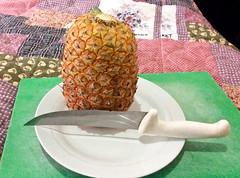 Ananas (Eerika Schulz) Tags: ananas pine apple pina ecuador puyo eerika schulz