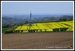 _DSC8779 (nowboy8) Tags: lincolnshire nikon nikond500 wolds rapeseed flowers horses trig trigpoint stjames church sheep fields nature