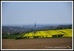 _DSC8777 (nowboy8) Tags: lincolnshire nikon nikond500 wolds rapeseed flowers horses trig trigpoint stjames church sheep fields nature
