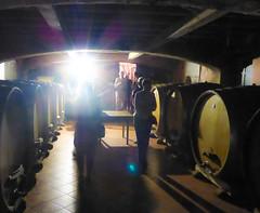 Wine Cellar (ex_magician) Tags: kojsko slovenia wine winecellar winery sloveniatrip vacation september 2018 moik photo photos picture pictures image lightroom adobe adobelightroom interesting europe
