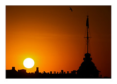 sun, bird, pavillon, chimneys (Armin Fuchs) Tags: arminfuchs stpetersburg russia sunset sun red pavillon bird chimneys jazzinbaggies