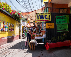 Xochimilco (RW Sinclair) Tags: fuji fujifilm ilc mirrorless xt1 mexico city mexicocity march 2019 street streetphotography urban people