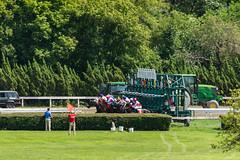 Race 4 - the start (avatarsound) Tags: boston suffolkdowns horse horseracing horses jockey jockeys race racetrack racing rider riding sport