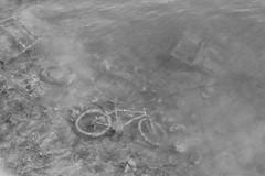 Vélo sous l'eau genre aqua bike (ZUHMHA) Tags: lyon france monochrome vélo bike eau water poissons fish fleuve fluvius plante pollution plant aquatique