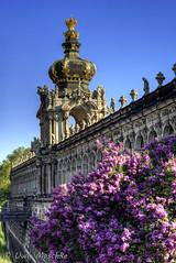 Frühling in Dresden (binax25) Tags: frühling spring dresden flieder zwinger violett lila blüten blpssom urbannature barock altstadt sachsen sáxony germany kronentor