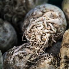celery (Stefanie Timmermann) Tags: roots celery marchejeantalon montreal