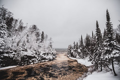 Temperance River after snowfall (michaelraleigh) Tags: northshore landscape storm serene highquality mystical 2035mm canon temperanceriverstatepark snow f28l trees secluded winter beautiful tree bridge forest magical canon5d2 outdoors peaceful canoneos5dmarkii april clouds minnesota