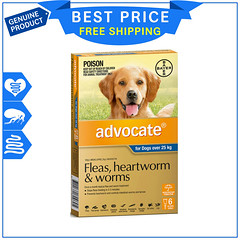 ADVOCATE for Extra Large Dogs flea and Heartworm Control (josephmurphy6) Tags: advocate extra large dogs flea heartworm control