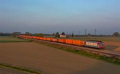 Orange Sunrise (maurizio messa) Tags: e652 mir alba sunrise morgendämmerung pavese lombardia cargo lineamessina intermodale treni trains railway railroad tigre mau bahn ferrovia freighttrain fret guterzuge nikond7100