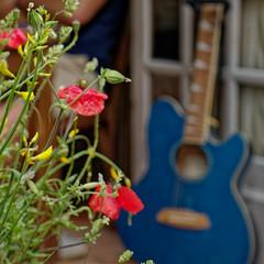 la guitare bleue (jemazzia) Tags: extérieur exterior esterno outside äubere buitenkant guitare guitar diegitarre chitarra gitaar