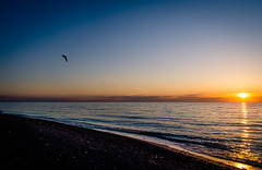 A New Day (Neil Cornwall) Tags: 2019 canada lakeerie march ontario parkscanada pointpelee nationalpark spring