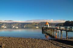 Akaroa - Banks Peninsula - New Zealand (Valentin.LFW) Tags: newzealand nouvellezeland south hemisphere photographer photography canon aotearoa birds wildlife landscape auckland