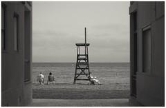 La lectora (una cierta mirada) Tags: santapola beach book novel sea seascape outdoors bnw blackandwhite