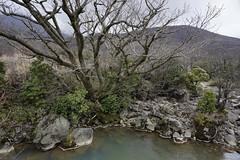 20190417a73_7414 (Gansan00) Tags: ilce7m3 α7ⅲ sony japan 大分 oita 日本 九重連峰 登山 landscape snaps ブラリ旅 04月 fe24105f4 trekking travelphotography 山
