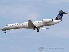N13538 United Express (ExpressJet Airlines) Embraer ERJ-145LR (Sandro Bandeira Colaço) Tags: kord ord chicago registration n13538 airline united express expressjet airlines aircraft embraer erj145lr airport ohare intl