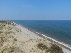 Findhorn Beach, Findhorn, Moray Coast, Good Friday 2019 (allanmaciver) Tags: findhorn beach sand dune height moray coast scotland sea waves rushes shades blue easter allanmaciver