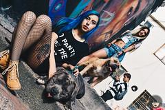 DSC_0061-3 (Luz_Luque) Tags: perros abkc bully street dogs photography bogo mascotas