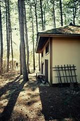 Le ménage de printemps va pouvoir commencer... (woltarise) Tags: montréal botanique jardin japonai cabane jardiniers outils soleil arbre pins couleurs ombres ricoh gr