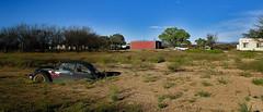 (mo.foto_) Tags: volkswagen vw arizona rural decay sky trees field transportation automotive car automobile