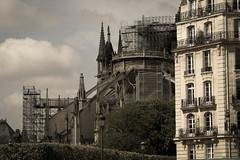 Paris ( Philippe L PhotoGraphy ) Tags: france cathédrale 1erarrondissement feu incendie ruederivoli iledefrance paris 2glise notredamedeparis monument