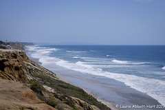 20190422Rejuvinate25641 (Laurie2123) Tags: carlsbad fujixt2 laurieturnerphotography laurietakespics laurie2123 odc ourdailychallenge pacificocean beach