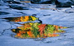 Swift River Puddle (Markus Jork) Tags: fuji slide slidefilm rvp reflection puddle fall foliage rock granite