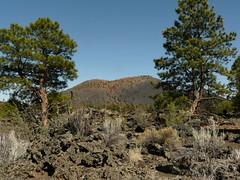 SSCNMs2018 (6) (jb10okie) Tags: sunsetcrater sunsetcratervolcano sunsetcratervolcanonationalmonument america arizona usa nps nationalmonuments hiking trails travel trip spring 2018