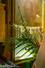 Saturday of Lazarus_2019 -82_wm.jpg (Russian Orthodox Christ the Saviour Cathedral, OCA) Tags: pussywillow people orthodoxchurch православиевканаде православныйприход вербноевоскресенье русскаяцерковь русскийправославныйсоборхристаспасителявторонто канадскаяепархия лазаревасуббота orthodoxchristianity mashacavallierphotography orthodoxservice parish toronto saturdayoflazarus orthodoxchurchintoronto russianorthodoxchristthesaviourcathedral oca торонто 2019 pulmsunday orthodoxchurchincanada русскийправославныйсоборхриста