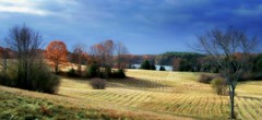 The Back Forty (NinoColetti) Tags: farmfield grass hay rural fallautumn harvest