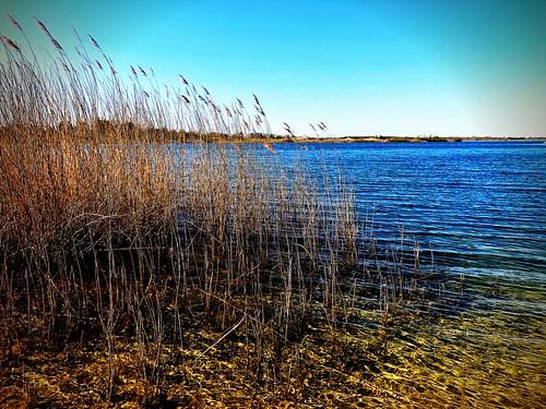 The Zarrenthiner gravel lake