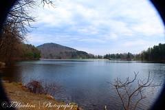 74226F9F-0499-4670-A3A2-83EB038A8E08 (Hawkins1977) Tags: mountains april 2019 nature natureza photography canon macro