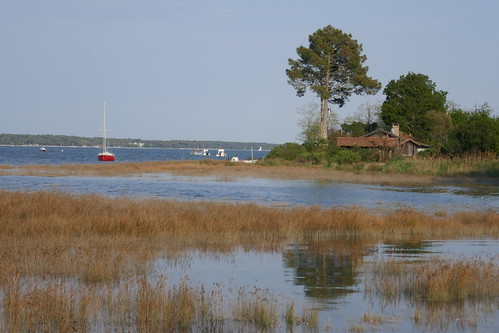 Fin d'après-midi à Jane de Boy, presqu'île du Cap Ferret, Bassin d'Arcachon, Gironde, Aquitaine, France.