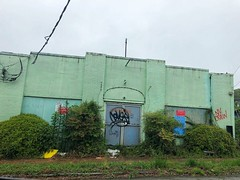 109/365 (moke076) Tags: 2019 365 project 365project project365 oneaday photoaday mobile cell cellphone iphone green mint boarded up old building abandoned overgrown lot east atlanta graffiti tags random