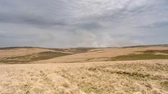 Fires Over Crane Hill (Wayne Elsworth) Tags: dartmoor