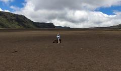 Route du Volcan, Reunion / Дорога на Вулкан, Реюньон (dmilokt) Tags: природа nature пейзаж landscape гора mountain вулкан volcan лава lava дорога road dmilokt ins