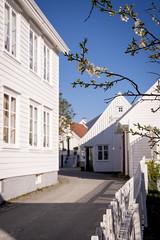 22. april 2019_6106065 (ellenmaynielsen) Tags: skudenes karmøy house søragadå norway idyll