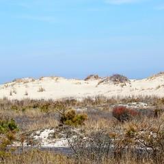 Dunes at Assateague Island (Hawkins1977) Tags: dunes beach photography pic canon assateague