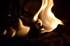 ...hot white burn... (carbumba) Tags: nikon indoor fireplace burn white flame fire micro closeup