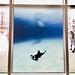 Philippe Ramette, Série photo prothèses-sculptures, Photographie, 2001-2006