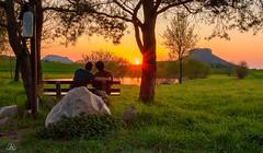 Romantic sunset (Uwe Kögler) Tags: saxony sachsen sächsischeschweiz sunset sonnenuntergang elbsandsteingebirge landscape landschaft lilienstein königstein bäume abend abendrot höllenhund gohrisch love deutschland dämmerung germany