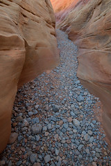Either I will find a way, or I will make one… (ferpectshotz) Tags: valleyoffire statepark vegas lasvegas nevada rockformations erosion sandstones desert cold winter hike trail dust sand pebbles pastelcanyon canyon slotcanyon
