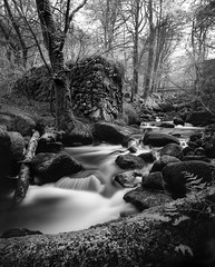 Kennal Vale River (Adam Clark Photography) Tags: woods woodland trees bw blackandwhite black white river stream water rocks sky tones flow milky smooth shootfilm sharp shadow shoot analog analogue film filmphoto filters lee ilford fp4 england cornwall outside countryside mono camera