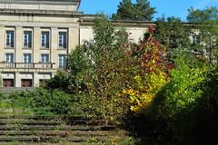 Bogensee_(CP) - 347 (sigkan) Tags: deutschland brandenburg bogensee lostplaces nikoncoolpixp520 vondetkanaccount