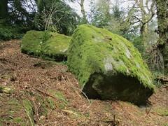 Brimpts Rocks Northern Wood upper rocks SX 6725 7468 (Bridgemarker Tim) Tags: lesserknowntors dartmoor rocks boulders brimpts