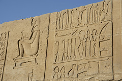 Medical text (Tim Brown's Pictures) Tags: egypt rivertours nileriver travel tours ancientegypt ancientworld ancienttemplestempleofkomombo uppernile